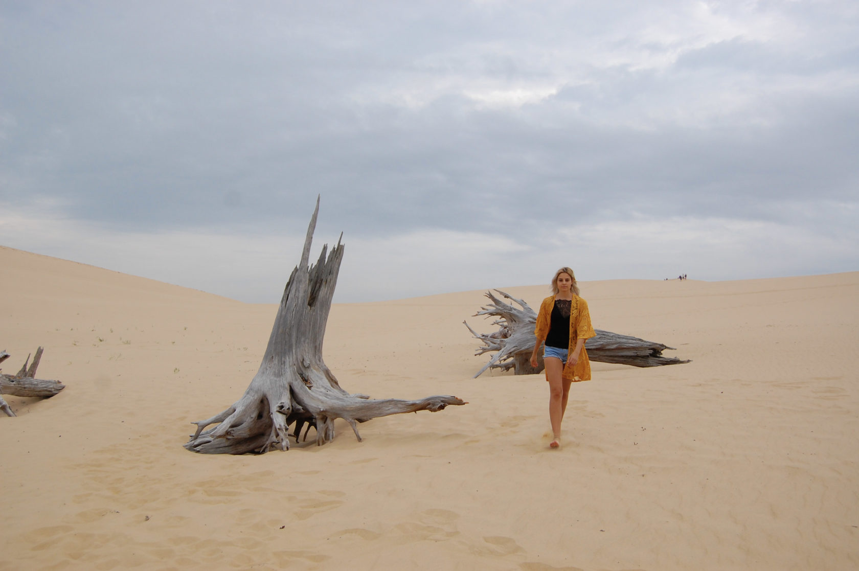 sand dunes style